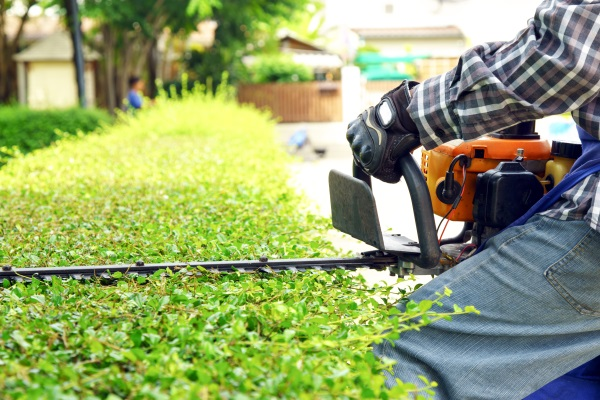 Lawn Maintenance Trimming Service Fort Atkinson, WI