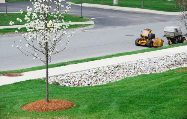 Lawn Maintenance Fort Atkinson, Wisconsin